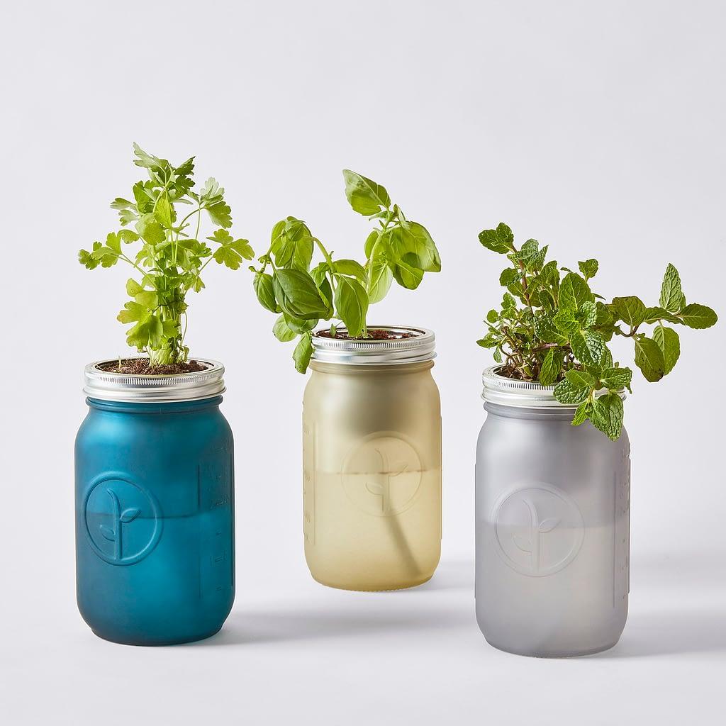 Herb Jar Kits